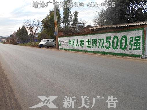 贵州人寿保险凤凰彩票极速pk10计划全天在线广告